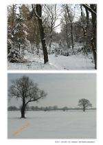 Winterbilder